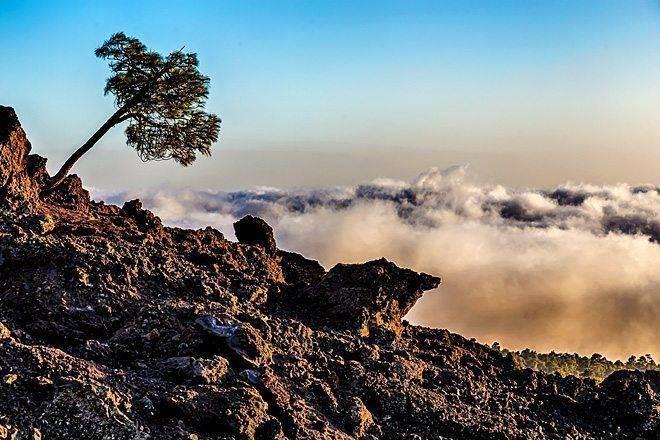 samostojatelnoe poseshhenie vulkana tejde v nacionalnom parke na tenerife 20 Самостоятельное посещение вулкана Тейде в Национальном парке на Тенерифе