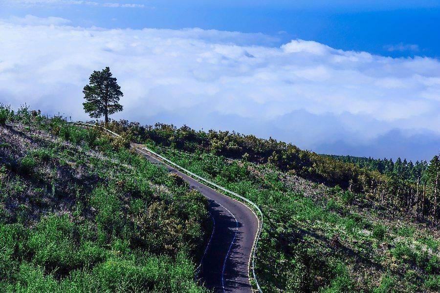 samostojatelnoe puteshestvie na kanarskie ostrova tenerife 2 Самостоятельное путешествие на Канарские острова (Тенерифе)