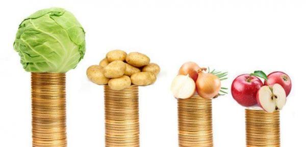 Сравнение цен на продукты питания в странах Европы (Польша, Германия, Чехия, Словакия)