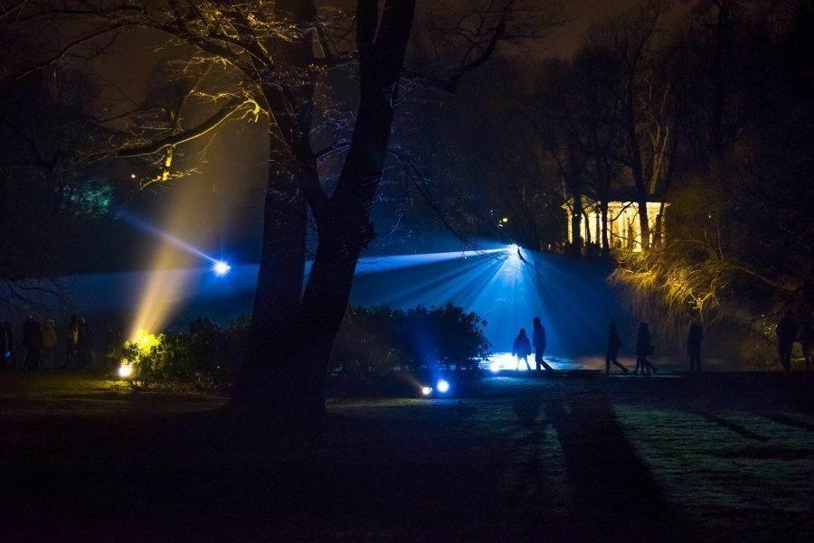 fotootchet s poseshhenija zimnego vechera sveta v parke korolevskie lazenki v varshave 19 Фотоотчет с посещения «Зимнего вечера света» в парке Королевские Лазенки в Варшаве