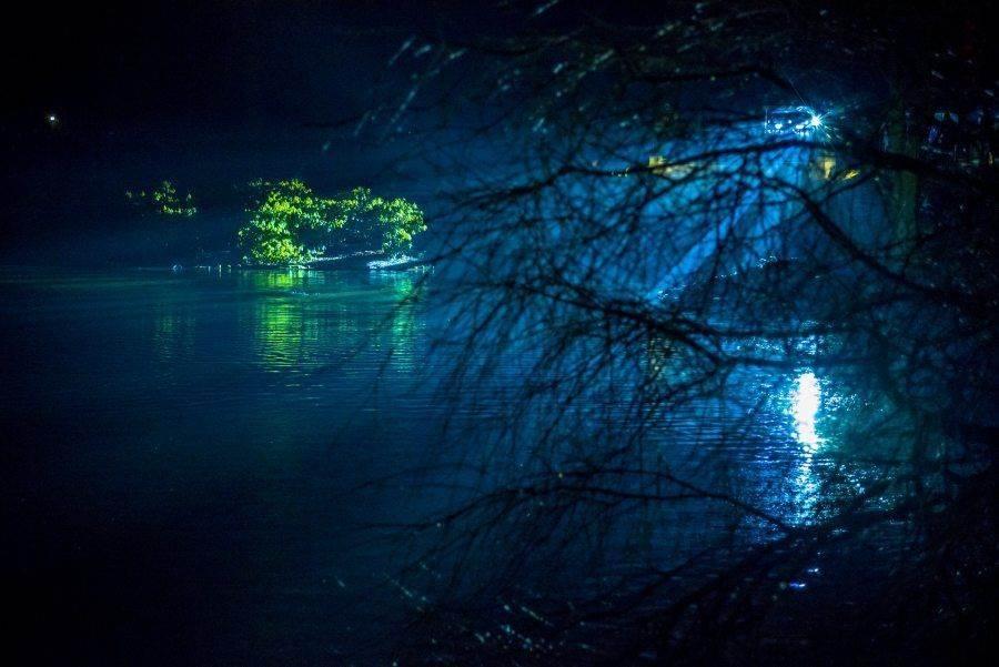 fotootchet s poseshhenija zimnego vechera sveta v parke korolevskie lazenki v varshave 24 Фотоотчет с посещения «Зимнего вечера света» в парке Королевские Лазенки в Варшаве