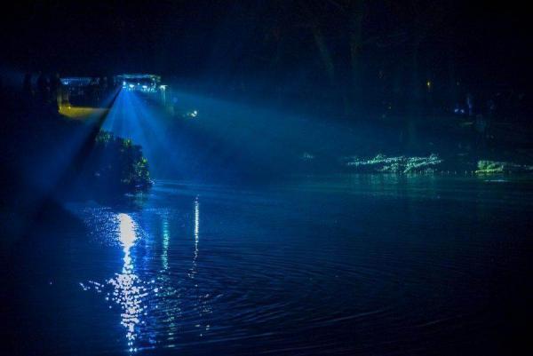 Фотоотчет с посещения «Зимнего вечера света» в парке Королевские Лазенки в Варшаве