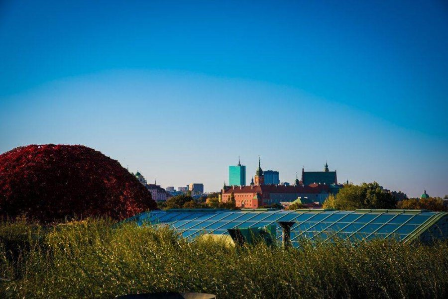 sad na kryshe biblioteki varshavskogo universiteta 10 900x601 Сад на крыше библиотеки Варшавского университета