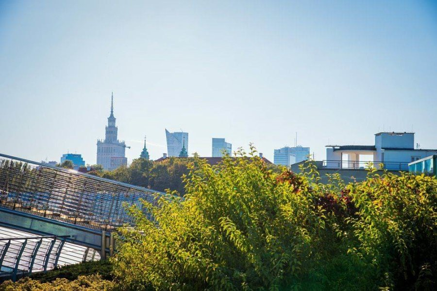 sad na kryshe biblioteki varshavskogo universiteta 20 900x601 Сад на крыше библиотеки Варшавского университета