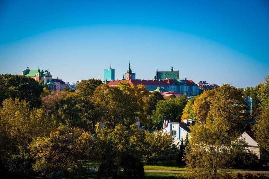 sad na kryshe biblioteki varshavskogo universiteta 21 900x601 Сад на крыше библиотеки Варшавского университета