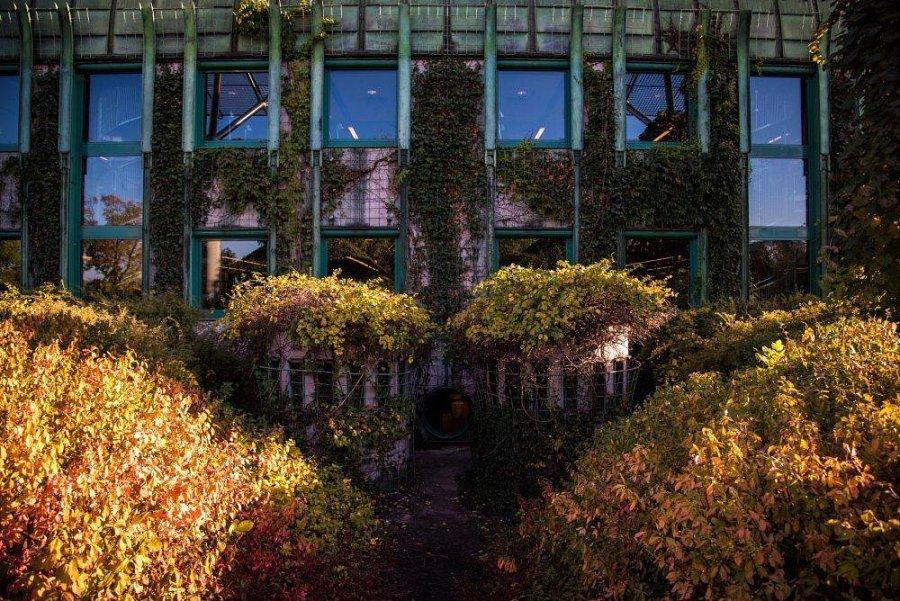 sad na kryshe biblioteki varshavskogo universiteta 4 900x601 Сад на крыше библиотеки Варшавского университета