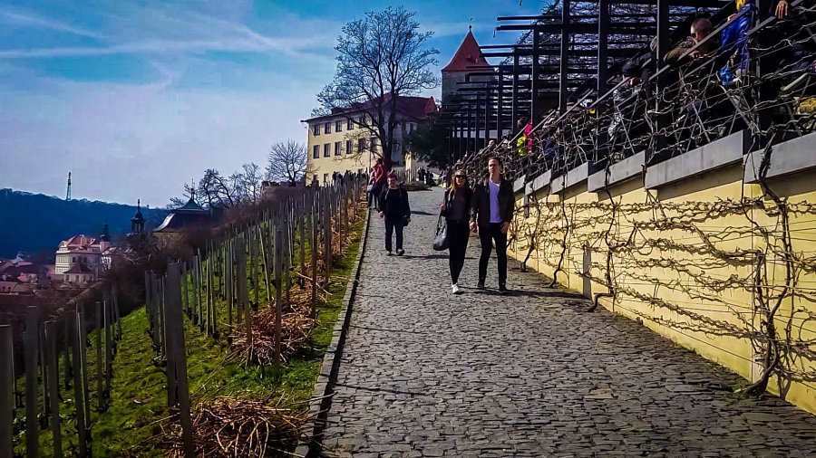 samostojatelnaja poezdka v pragu fotootchet den 2 5 900x506 Самостоятельная поездка в Прагу: фотоотчет. День 2