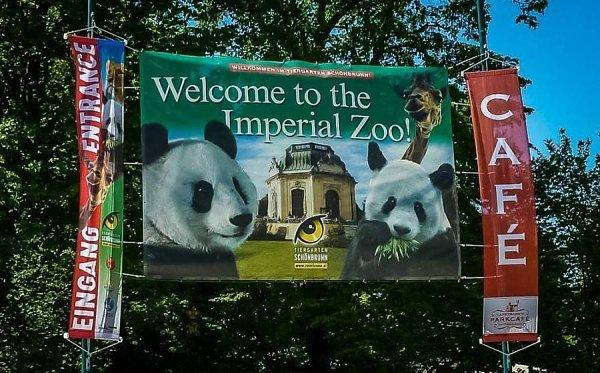 Венский зоопарк Шёнбрунн (Tiergarten Schönbrunn)