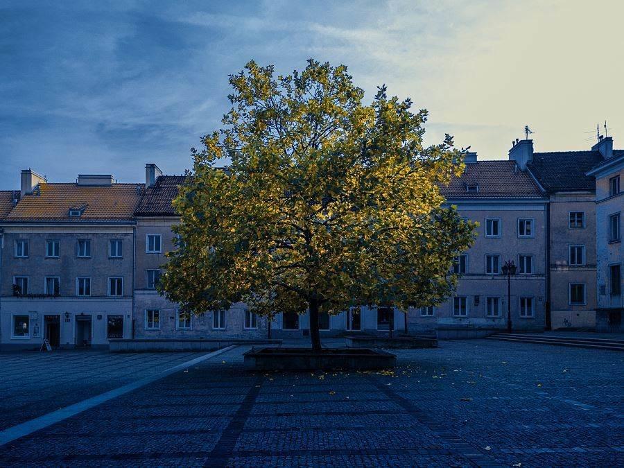 20171017 150100 Фотопрогулка по осенней Варшаве