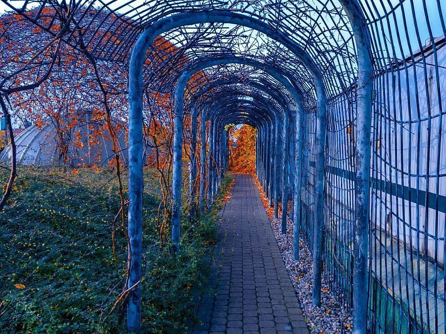 Фотопрогулка по осенней Варшаве